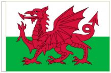 "Wales 18"" x 12"" (45cm x 30cm) Sleeved Boat Flag"
